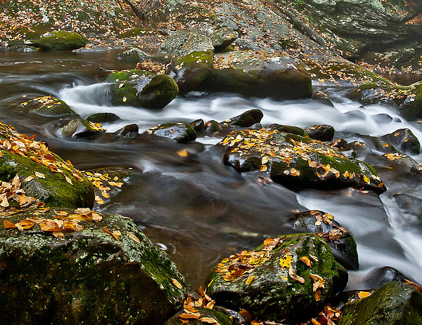 Charles Fletcher - Appalachian Stream Flow