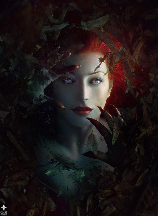 Omri Koresh - Ariel