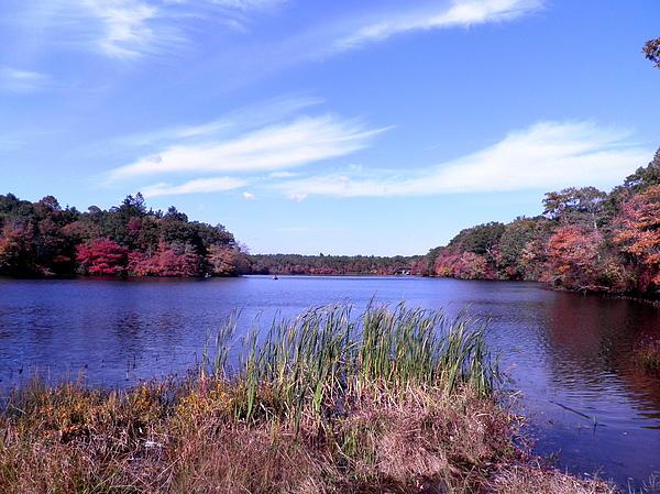 Kate Gallagher - Autumn on the Lake