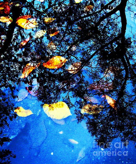 Yury Bashkin - Autumn reflection