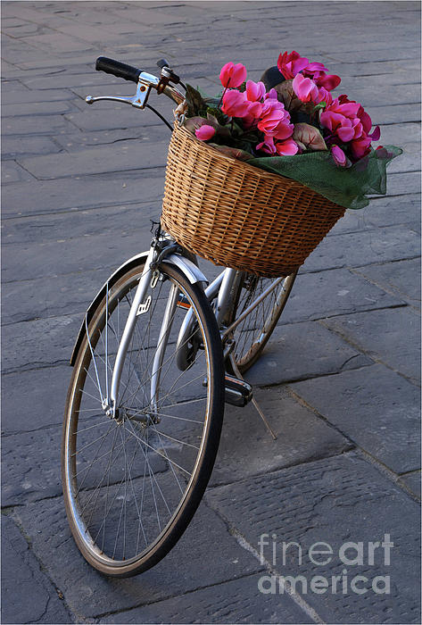 Bob Christopher - Bicycle In Lucca Italy