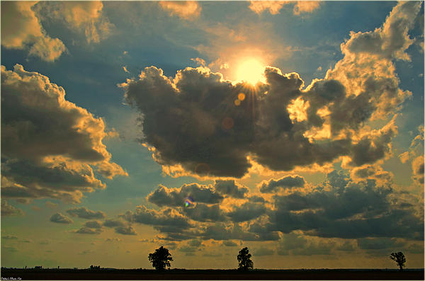 Debbie Portwood - Big Sky Sunset