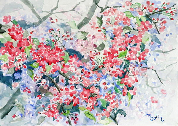 Phong Trinh - Blossoms In The Mist