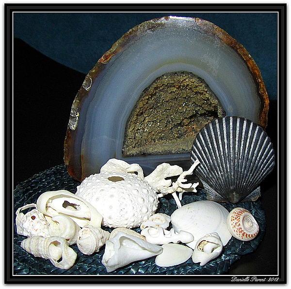 Danielle  Parent - Blue gem and Seashells Collection