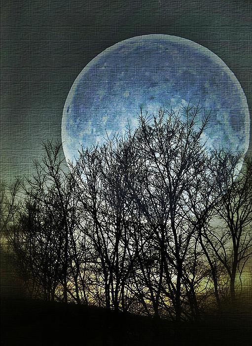 Marianna Mills - Blue Moon
