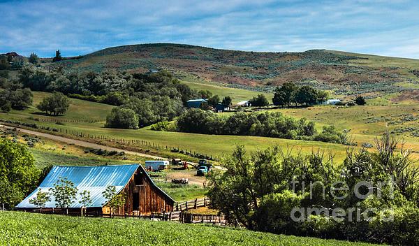 Robert Bales - Butte Farm
