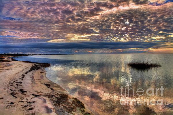 Dan Carmichael - Buttermilk Sunset Over Pamlico Sound