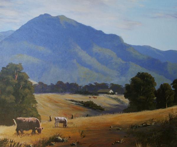 Anne Gardner - Cambewarra Mountain