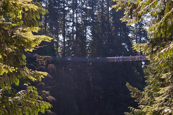 Peggy Zachariou - Capilano Suspension Bridge