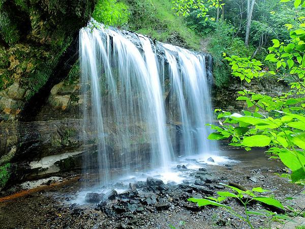 Gary Harris - Cascade Falls...3