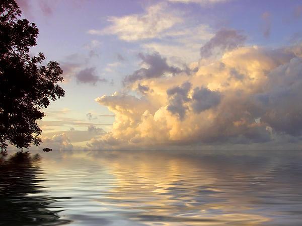 Pim Feijen - Close to horizon