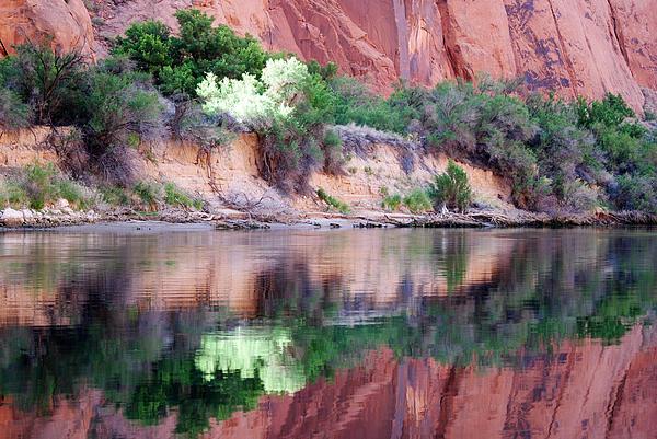 Carolyn Flinn McCool - Colorado River Majesty