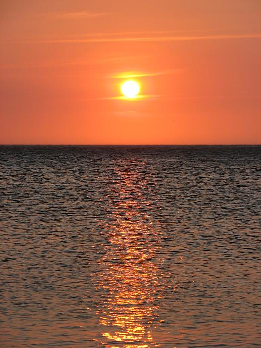 Gal Moran - Conversation with the sun