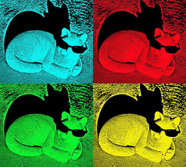 Aimee L Maher Photography and Art Visit ALMGallerydotcom - Cool Cat Pop Art