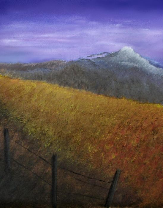 Kathy Garcia - Country Field