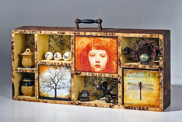 Susan McCarrell - Curious Cabinet