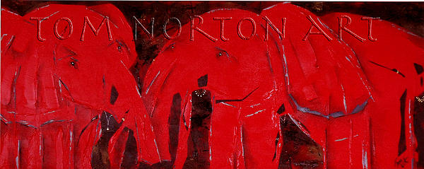 Tom Norton - Dancing with Red Elephants