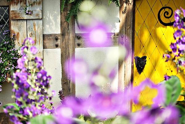 Floyd Menezes - Door Behind The Secret Garden
