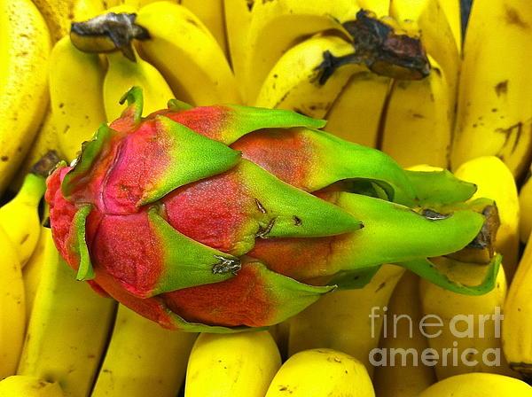 Sean Griffin - Dragon Fruit