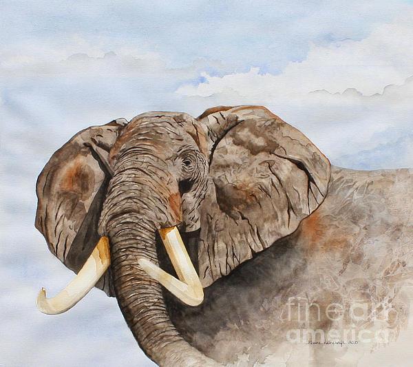 Grace Ashcraft - Elephant