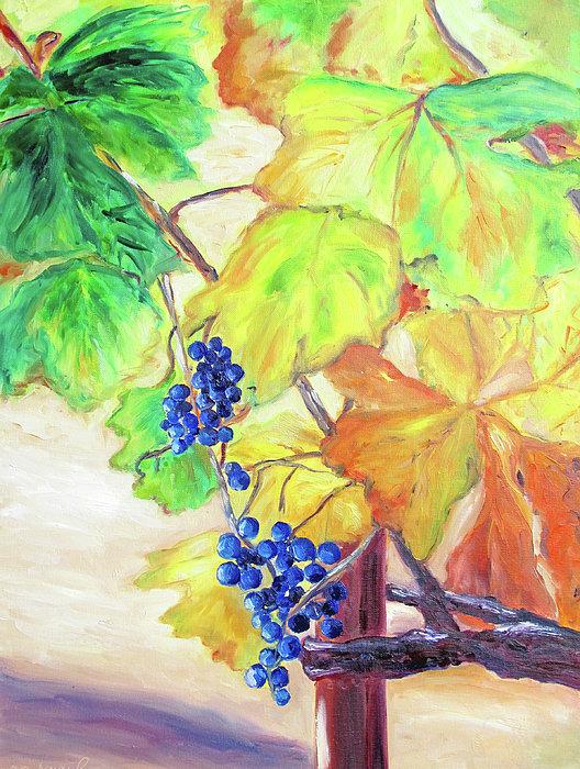 Barbara Anna Knauf - Fall Grapes