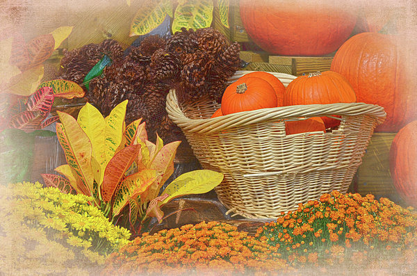 Sandi OReilly - Fall Treasures