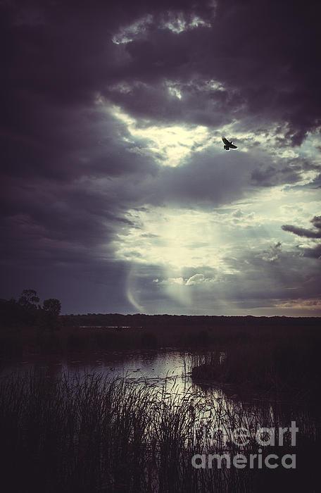 Iris Greenwell - Far Away