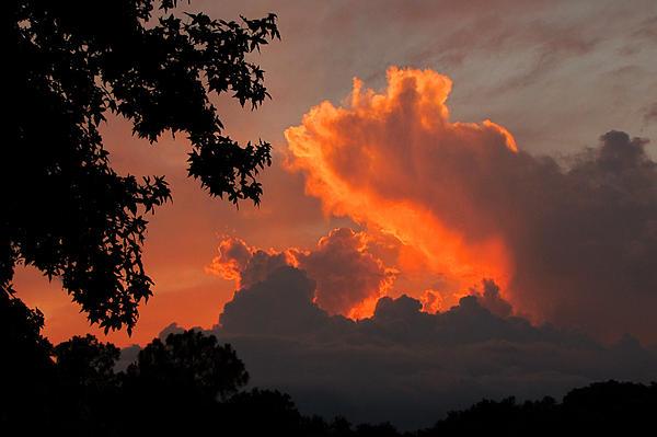 Peg Urban - Fiery Sunset