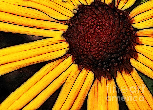Paul Ward - Flower - yellow and brown - abstract