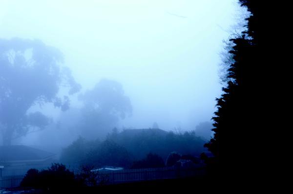 Maria  Disley - Foggy Dawn