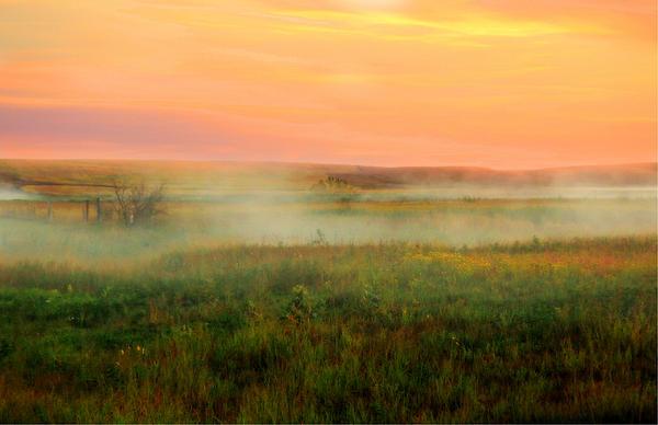 Susan Schwarting - Foggy Morning Sunrise