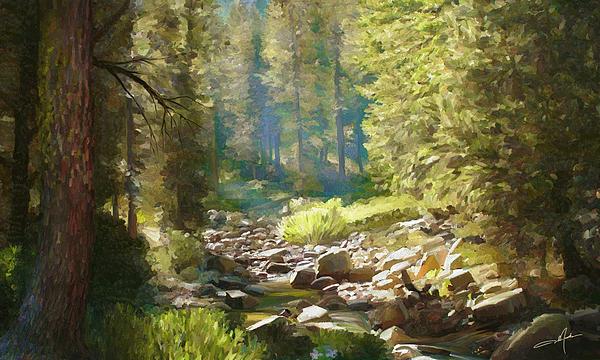 Dale Jackson - Forest Creek