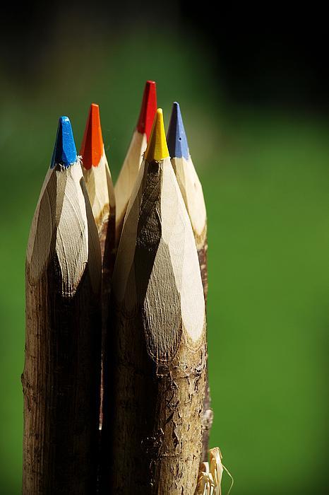 Ettore Zani - Forest of colors