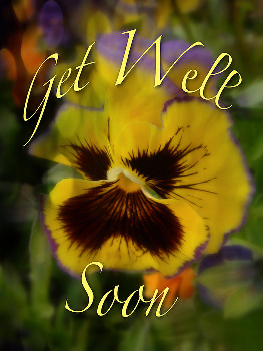 Mother Nature - Get Well Card - Floral Pansy