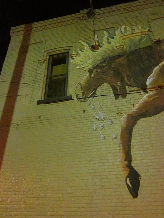 Guy Ricketts - Giant Moose Peeking in Window