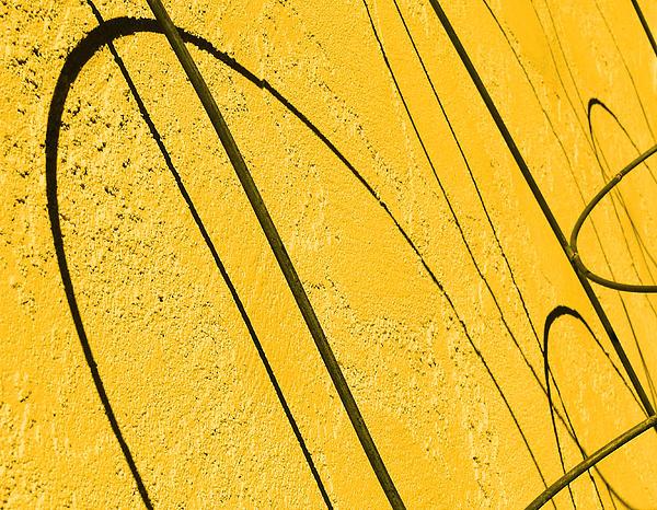 Jeremy Nicholas - Golden Shadows
