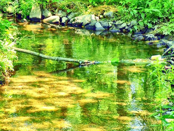 Jose Lopez - Green Creek
