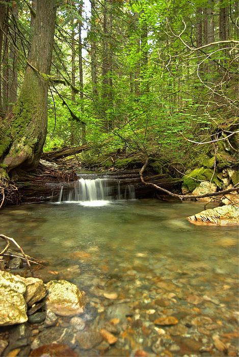 Michael Peychich - Happy Trail Falls