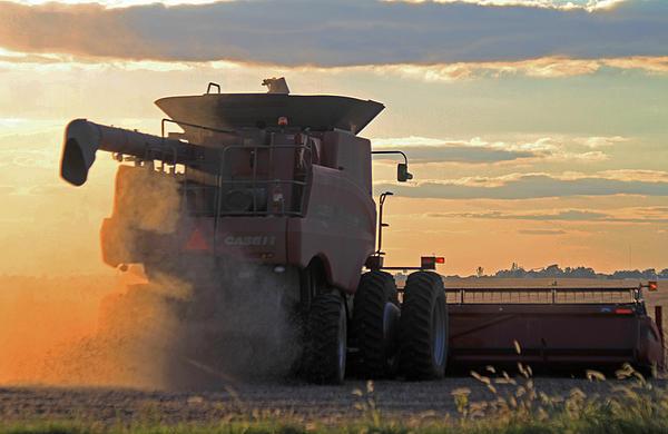 Jim Ferrier - Harvesting at Sunset