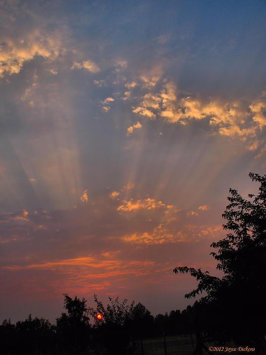 Joyce Dickens - Heavenly Rays