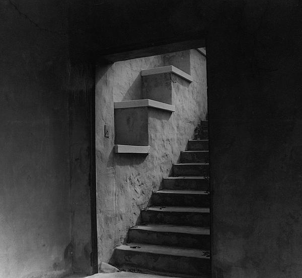 David Mcchesney - Howey stairway