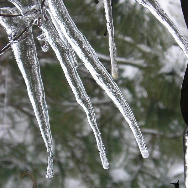 Helen Fern - Icy Fingers