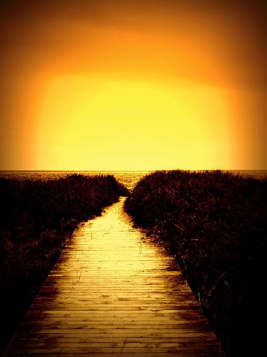 Nigel Beck - Into The Sun