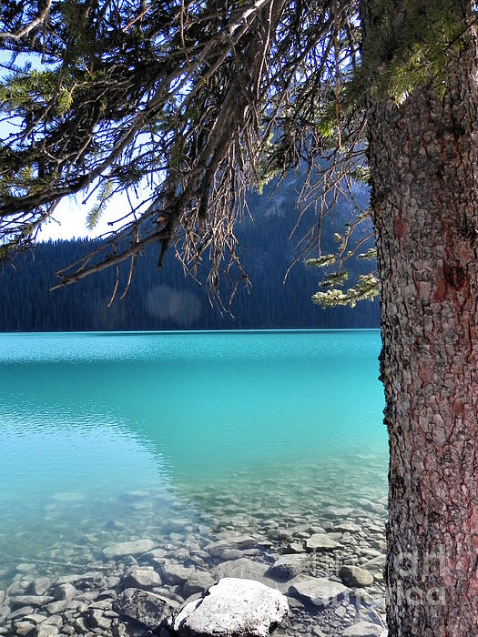 Patricia  Paterson - Lake Louise Blue