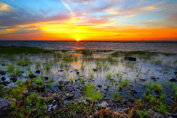 Tracy Welker - Lake Okeechobee Sunset