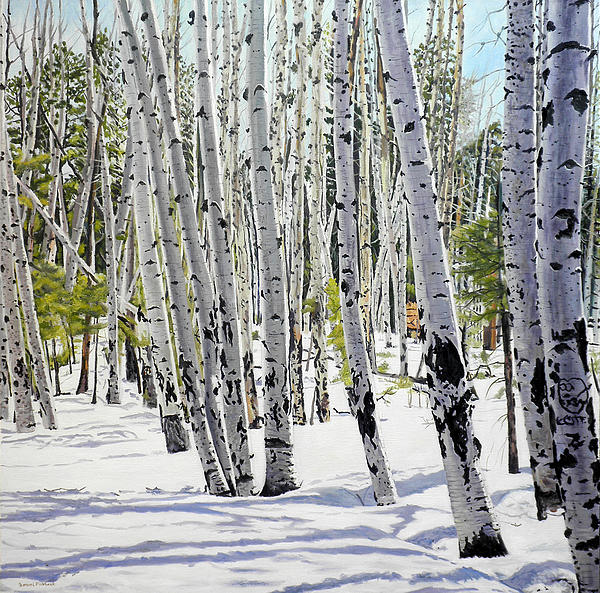 Daniel Fishback - Landscape Painting - Winter Aspens - 36 x 36 Oil