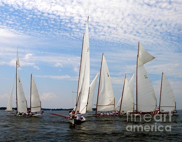 Lainie Wrightson - Log Canoes