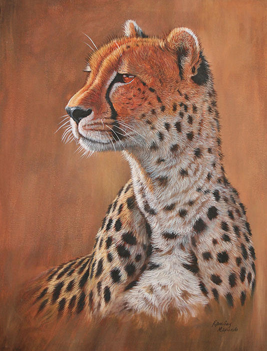 Ramsey Mapunde - Male Cheetah