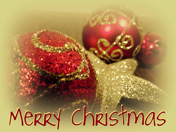 Lorainek Photographs - Merry Christmas