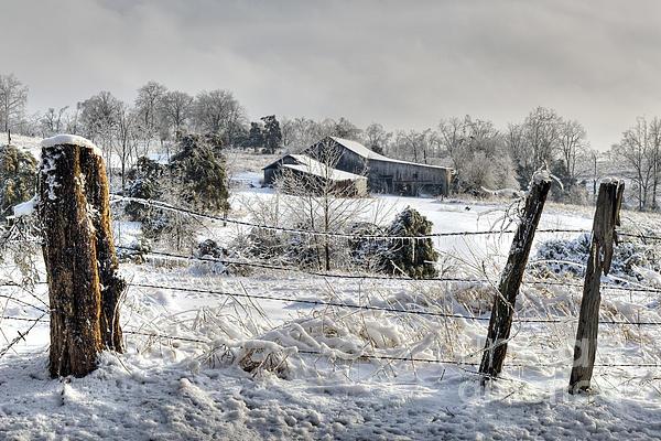 Daniel Dempster - Midwestern Ice Storm - D004825